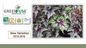 GREEN-FUSE-BOTANICALS-NEW-VARIETIES-2018-2019-v1-1