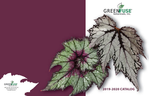 2019-Green-Fuse-Catalog-COVER