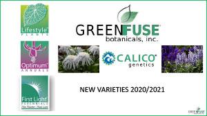 GREEN-FUSE-NEW-VARIETIES-2020-21-v3-1